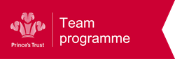 Princes Trust Team Logo